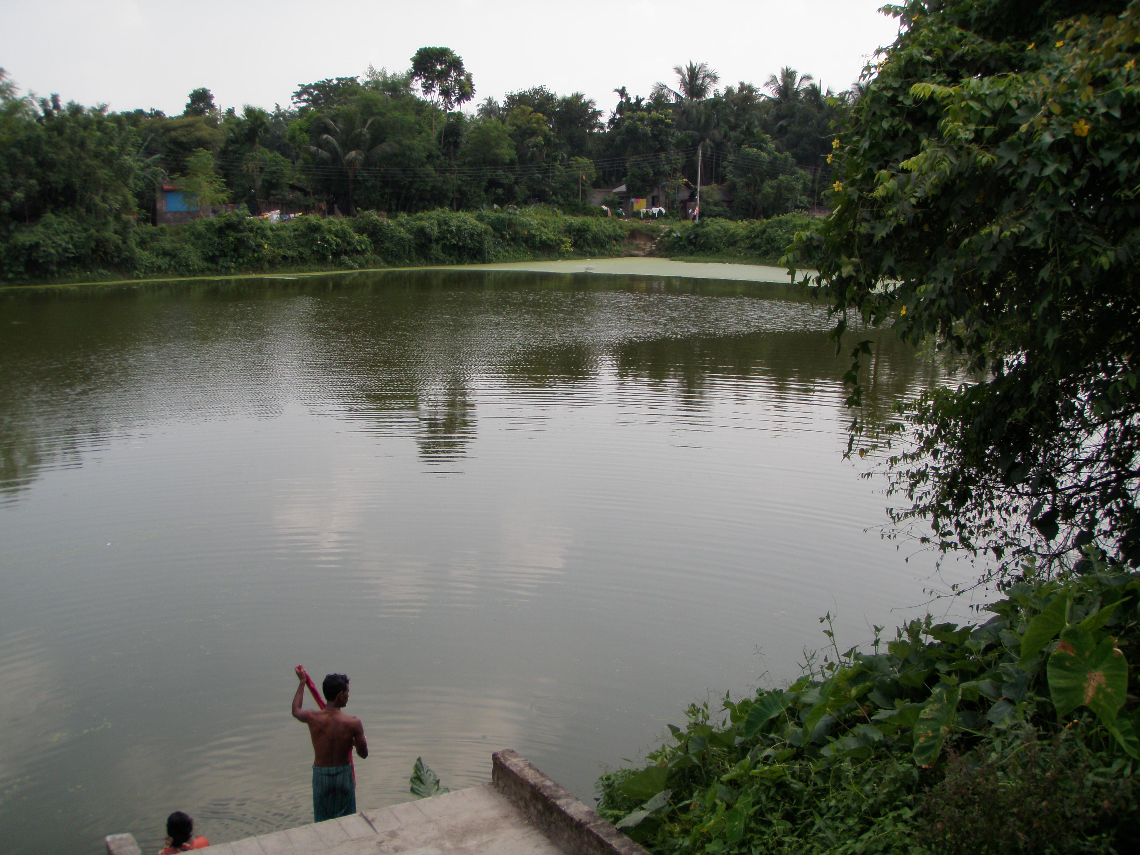 Image result for village pond