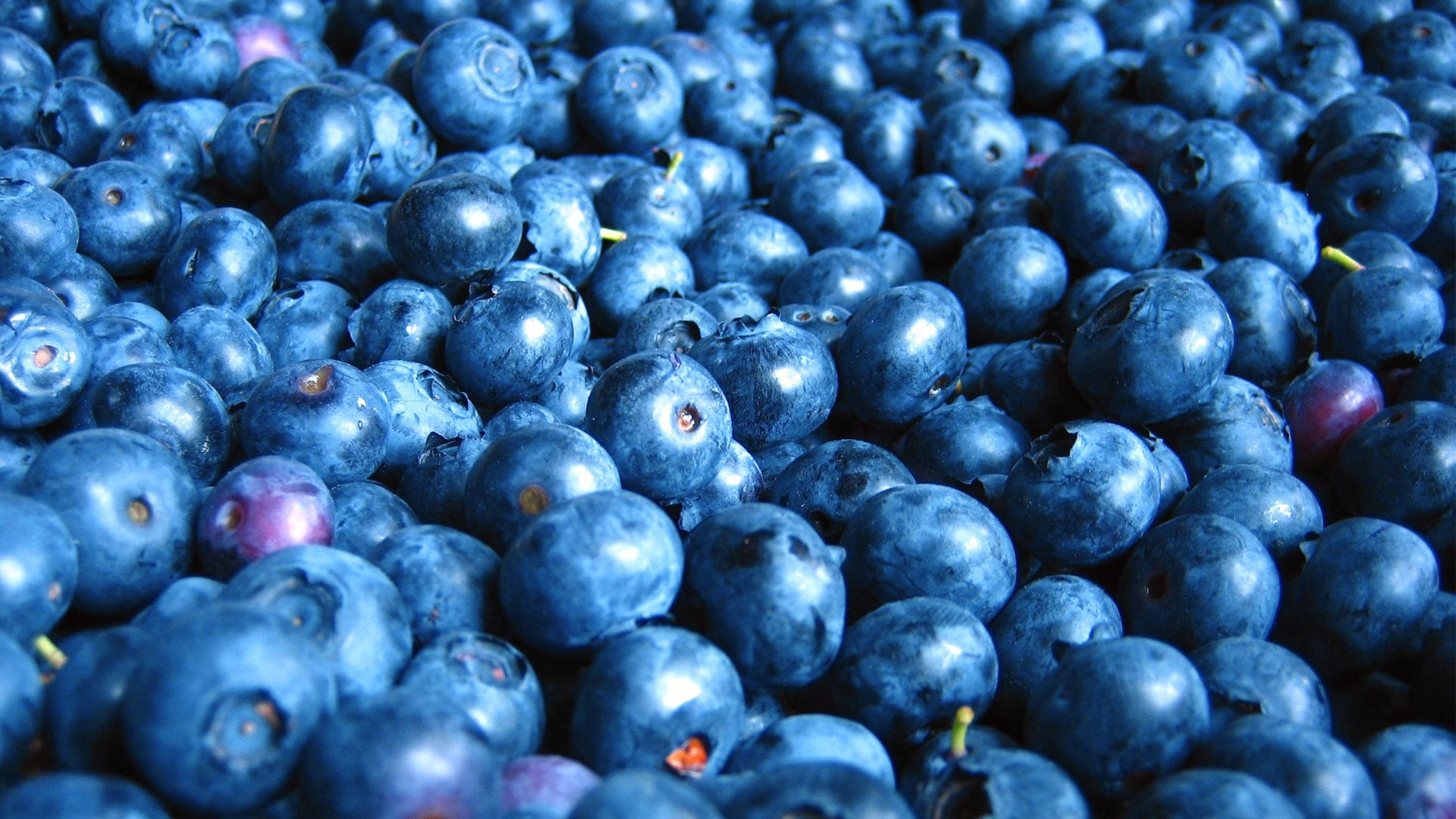Blueberries .jpg