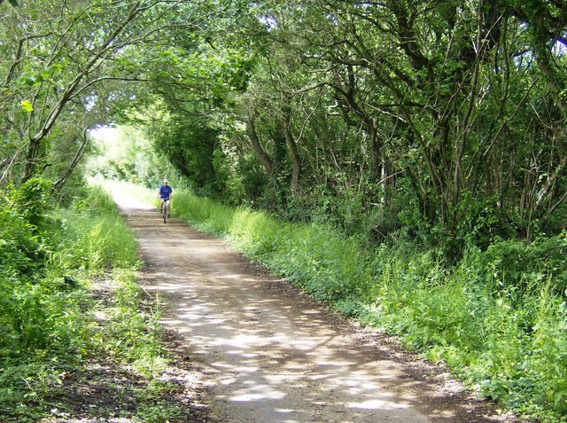 Cyclist on NCN 23 - geograph.org.uk - 485472