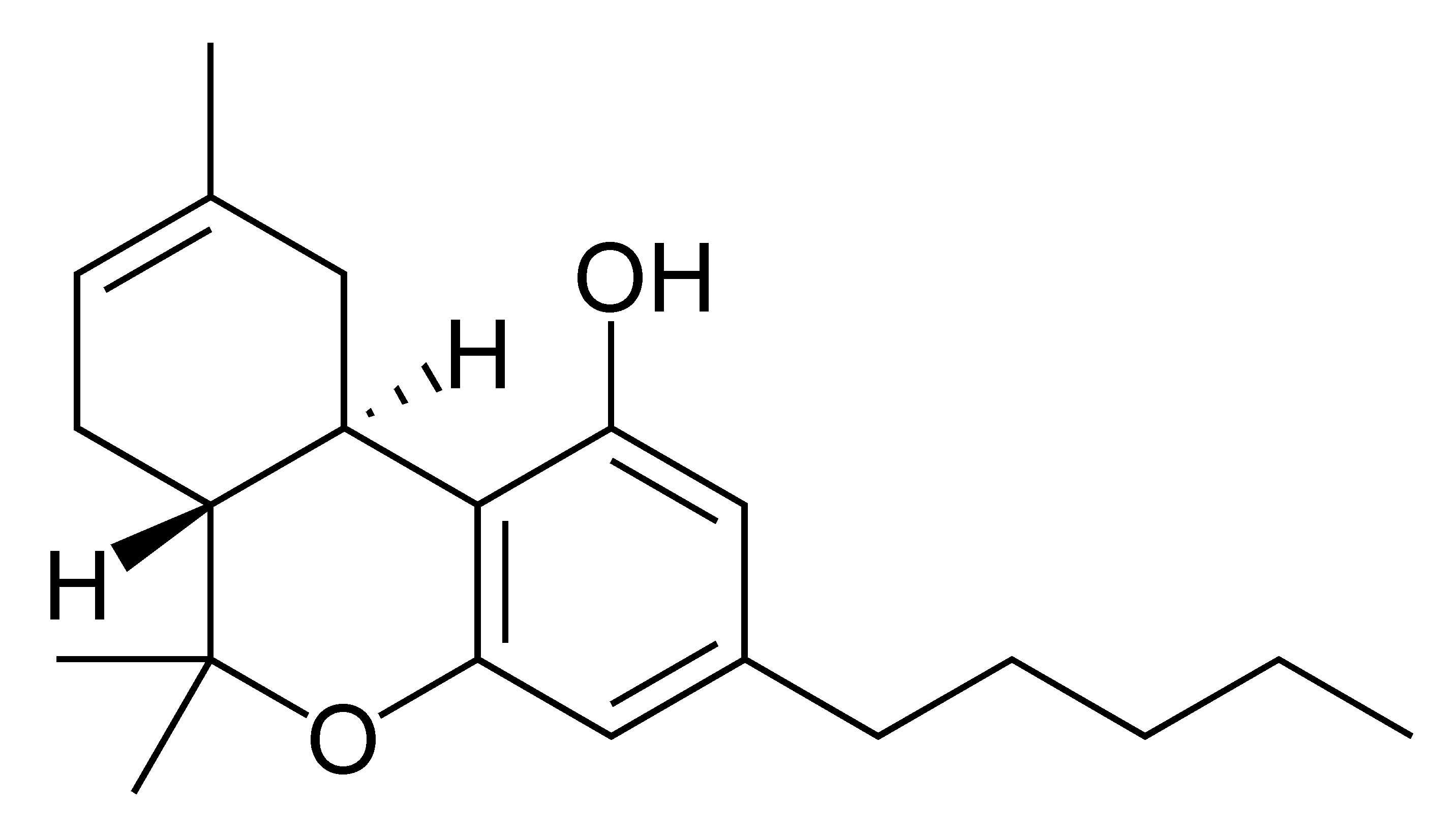 tetrahydrocannabinol thc Tetrahydrocannabinol (thc), active constituent of marijuana and hashish that was first isolated from the indian hemp plant (cannabis sativa) and synthesized in 1965 for the effects of the drug, see marijuana.