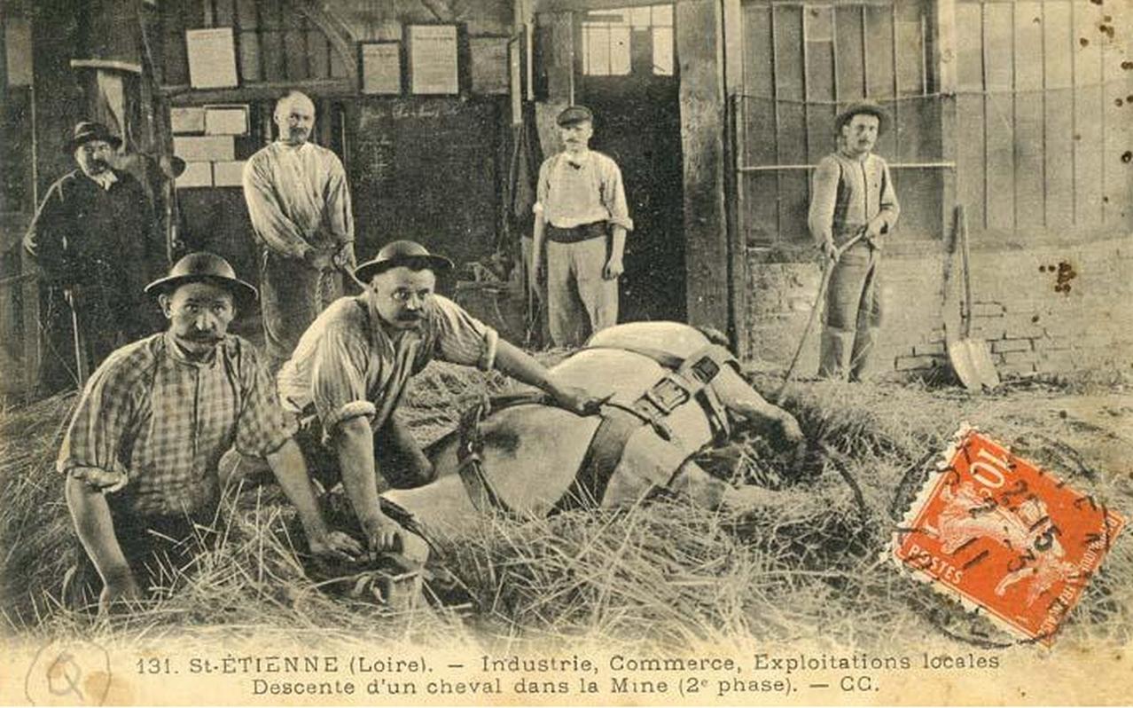file descente d 39 un cheval dans la mine 2 jpg wikimedia commons. Black Bedroom Furniture Sets. Home Design Ideas