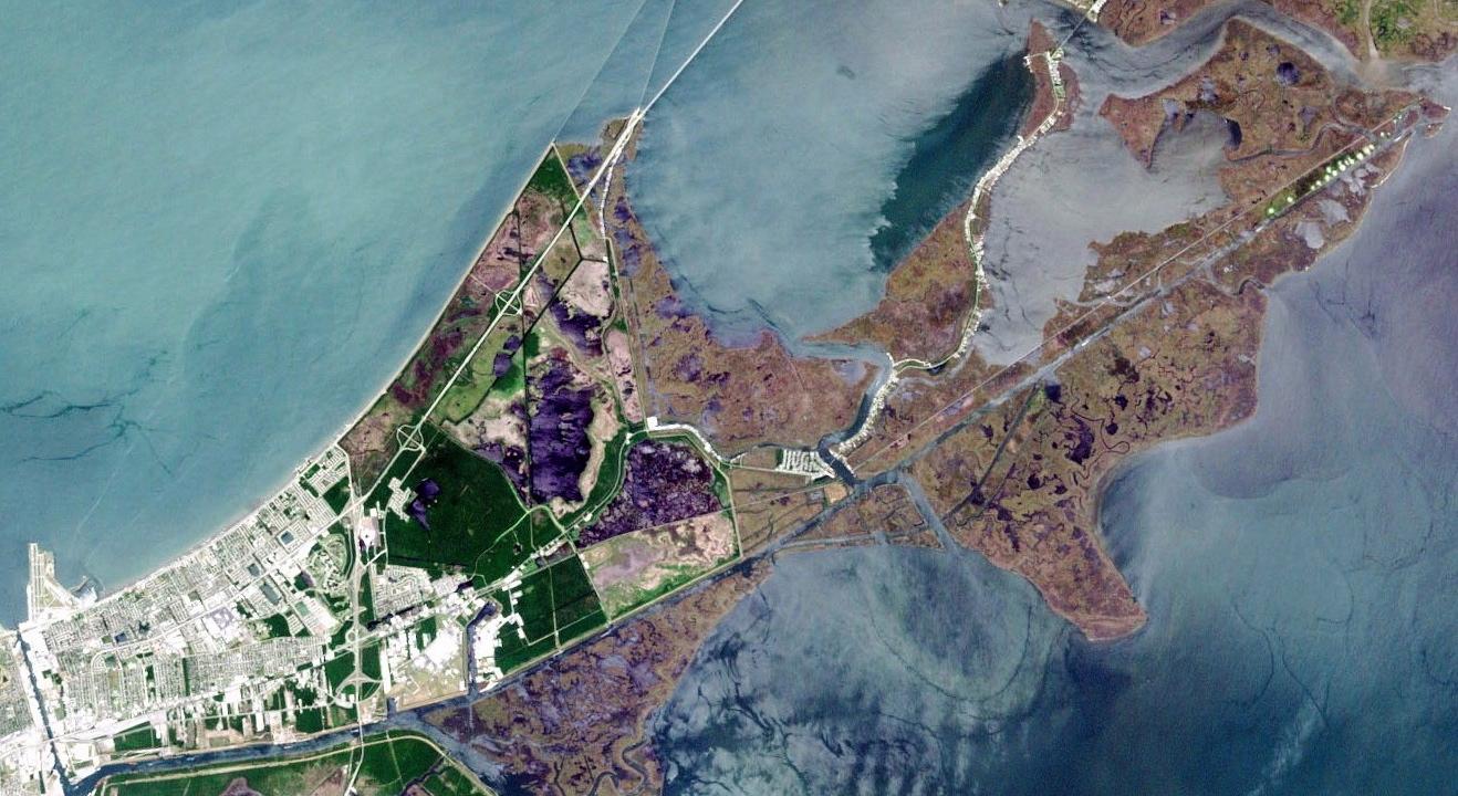 EasternNewOrleansLandsat.jpg
