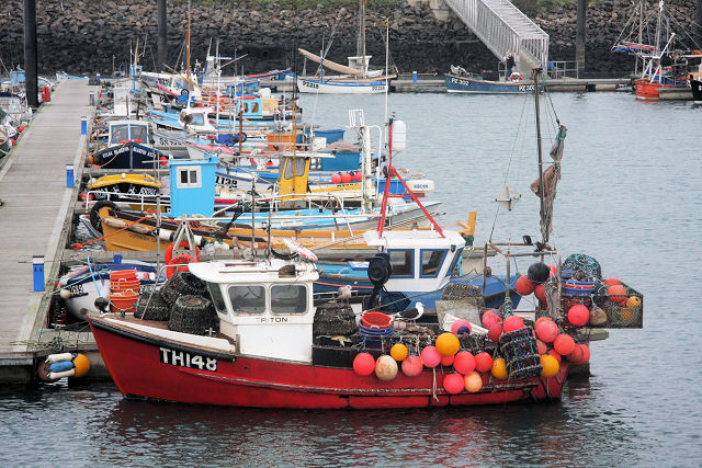 Fishing boats in Newlyn Harbour - geograph.org.uk - 1109544