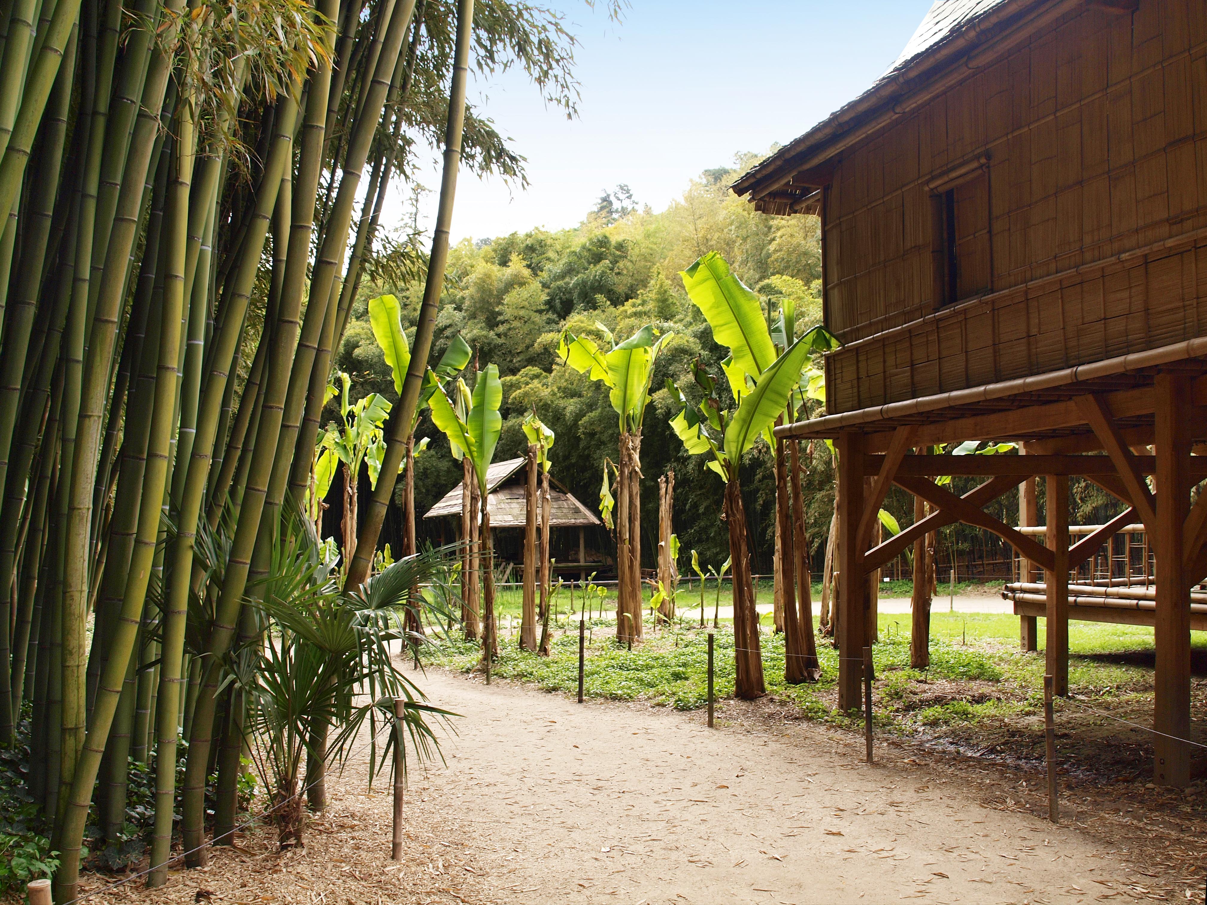 File g n rargues bambouseraie village laotien wikimedia commons - La bambouseraie a anduze ...