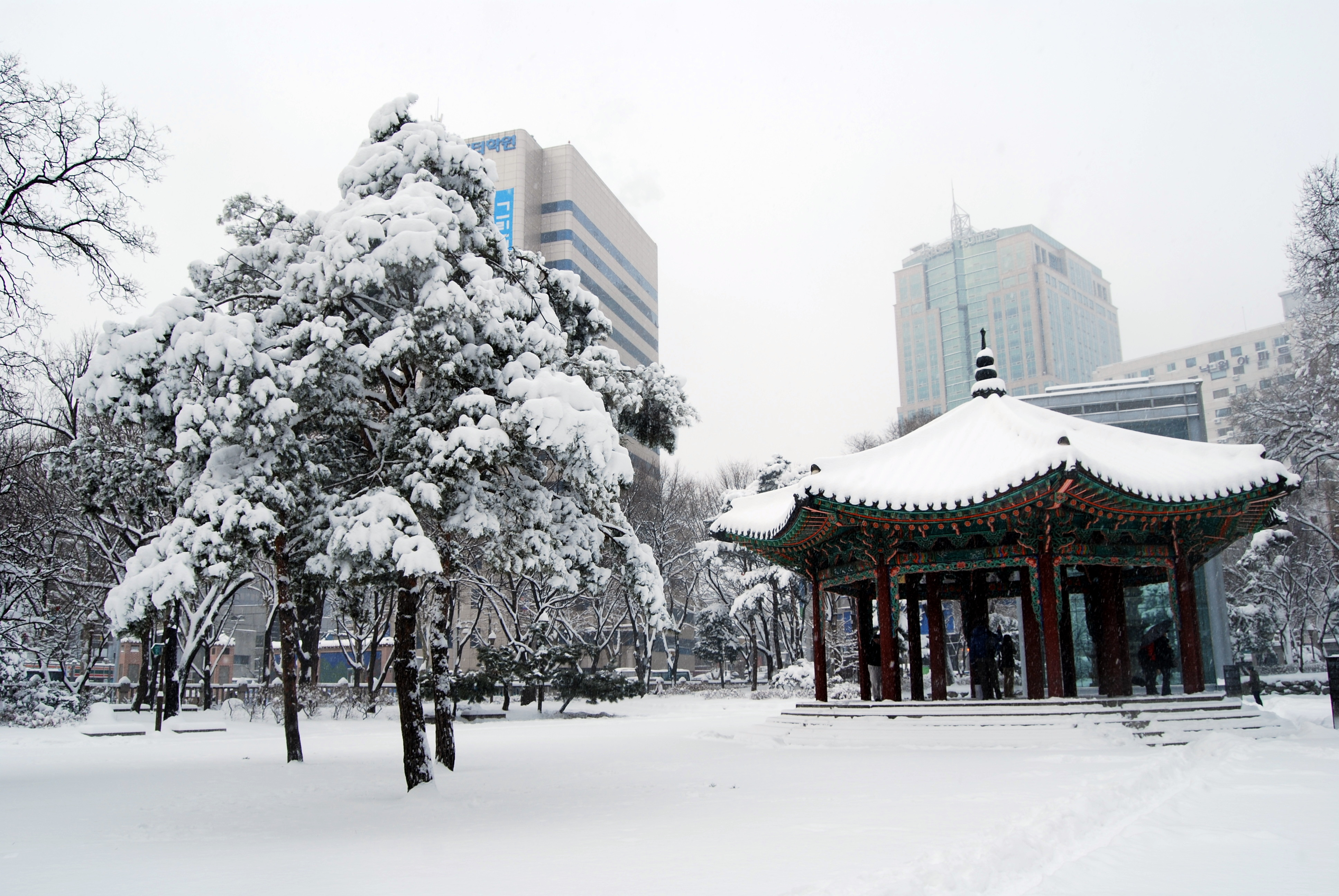 file heavy snow in seoul 4 jan 2010 covered the park. Black Bedroom Furniture Sets. Home Design Ideas