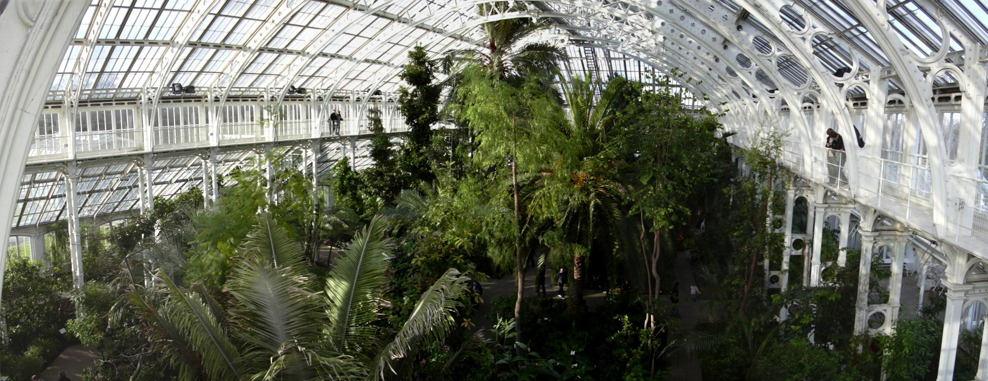 File kew gardens greenhouse jpg for Jardin botanico de kew
