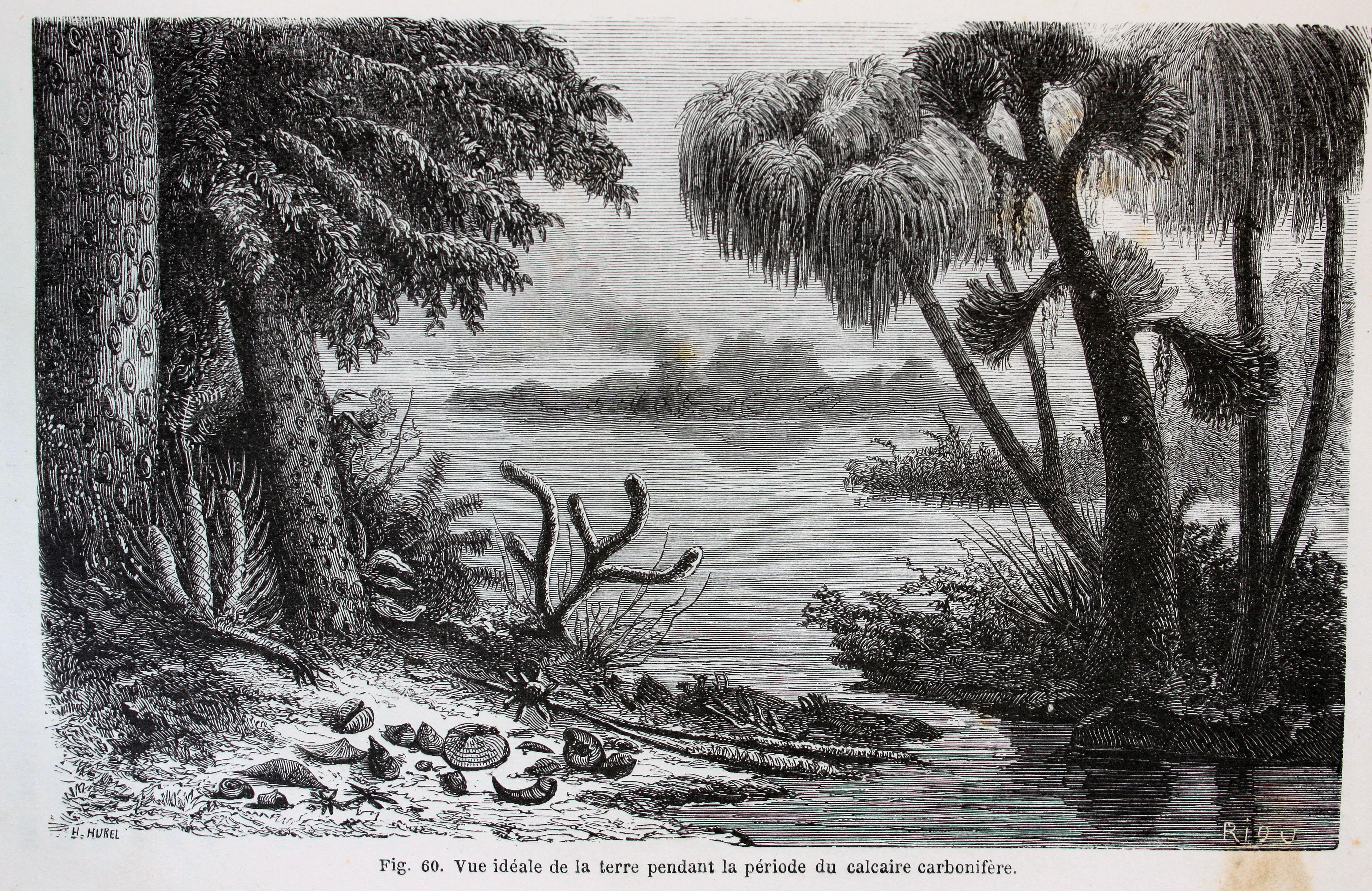 Martin Rudwick Natural History