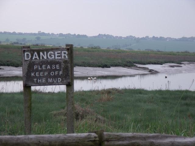 Mud flats - geograph.org.uk - 1305410
