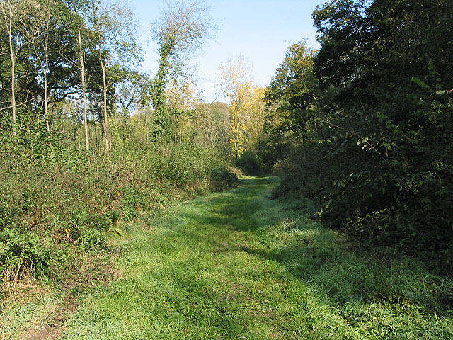 Nature Trail through Highnam Woods - geograph.org.uk - 591260