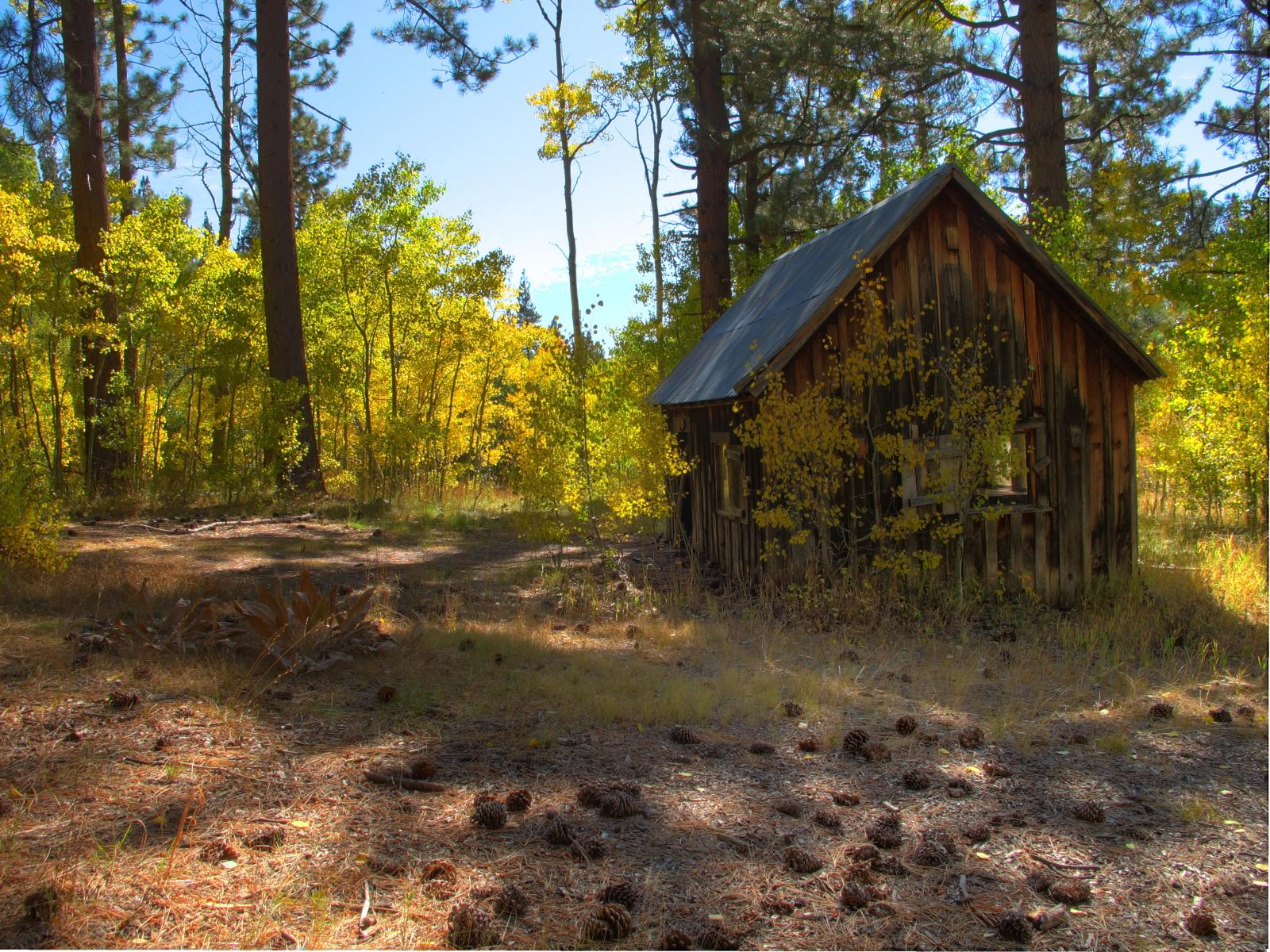 File Old Cabin Marlette Lake Wikimedia Commons