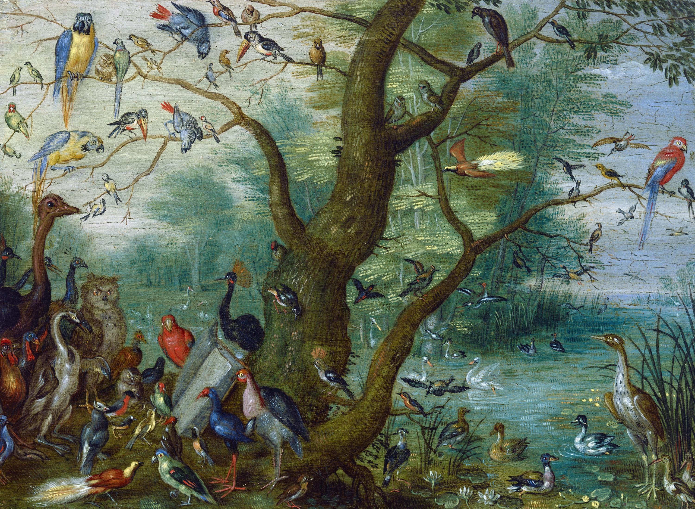 File:Omgeving van Jan van Kessel de Oude - Concert van Vogels.jpg ...