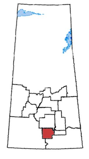 Palliser (Saskatchewan electoral district)