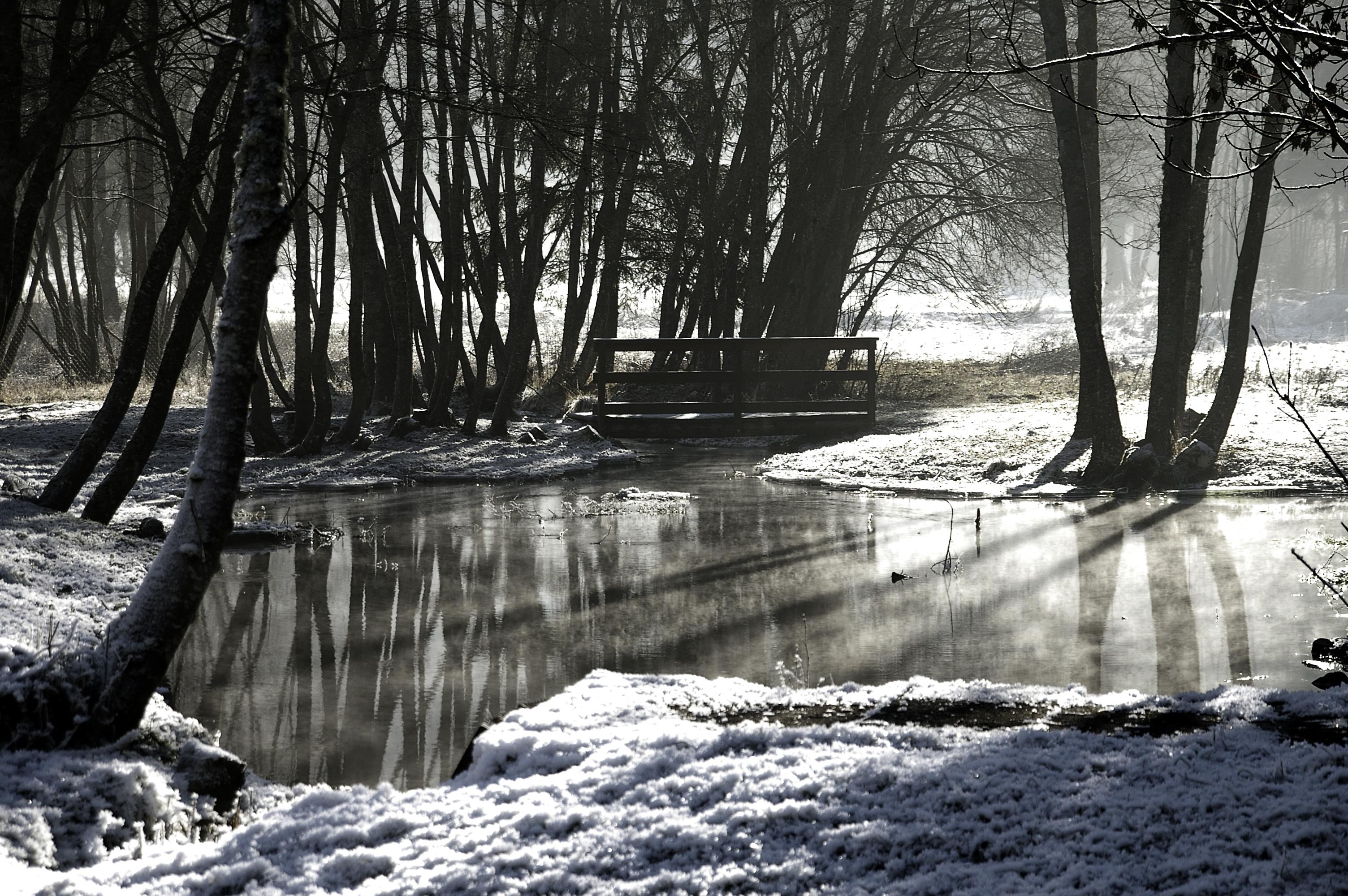 Paysage 2000 se rapportant à file:paysage d' hiver dans le valjouffrey - wikimedia commons