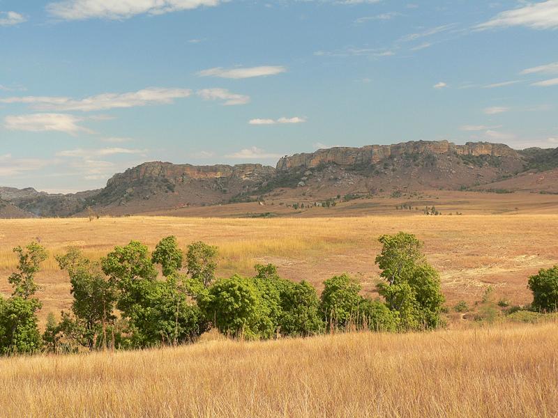 Seasons of Madagascar: Autumn