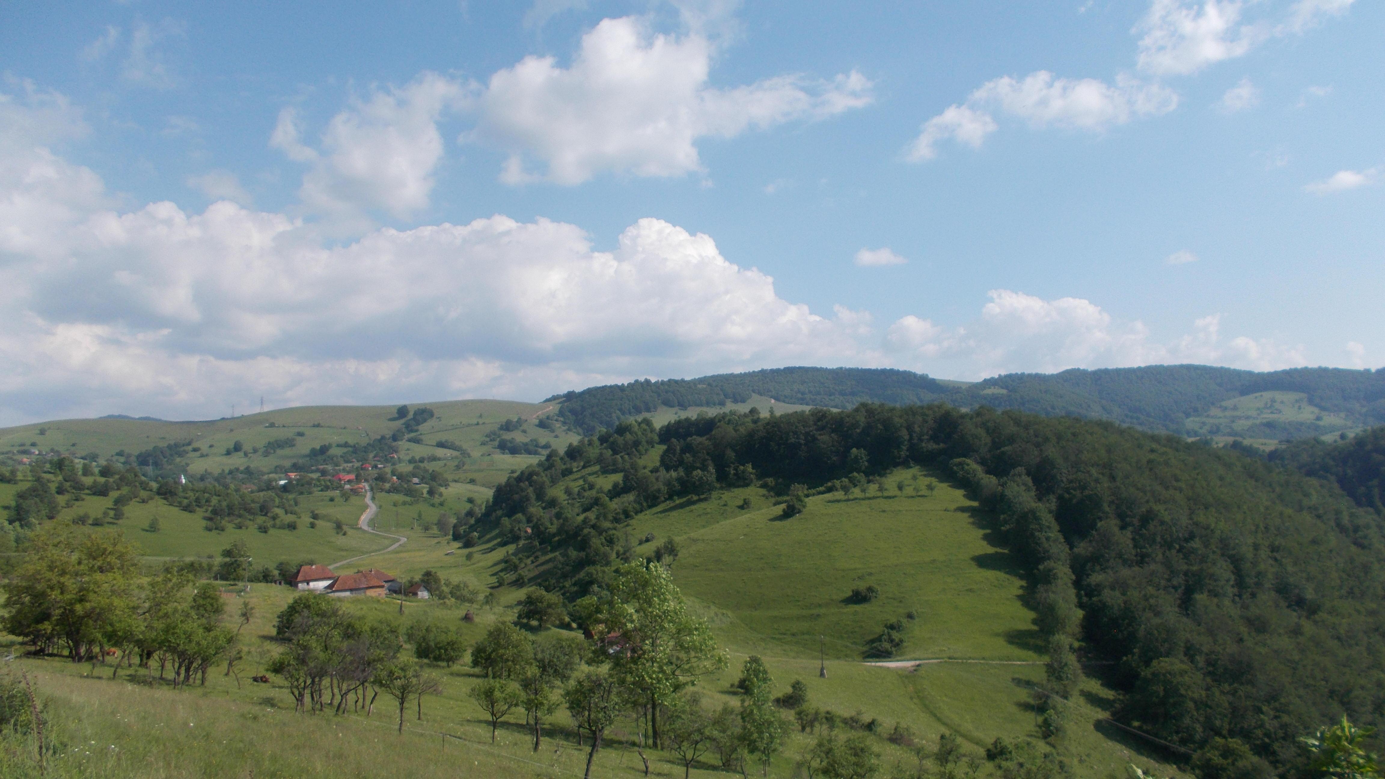 Ponoară Bihor Wikipedia