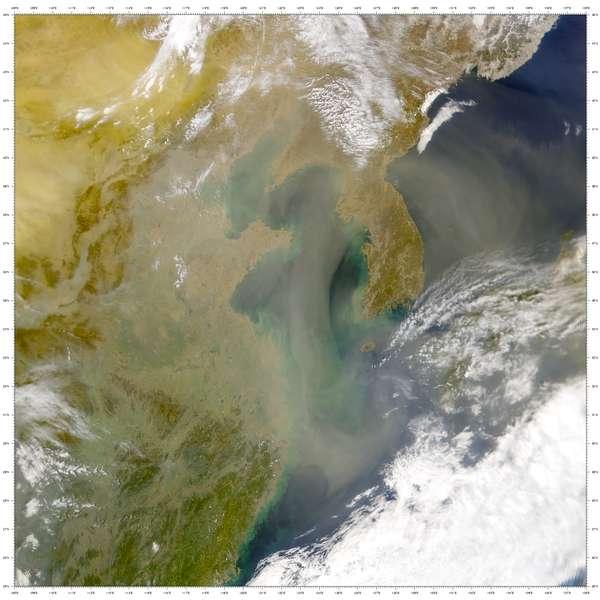 Asian Dust Wikipedia
