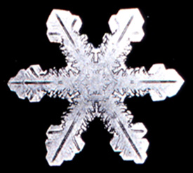 Snowflake9.png