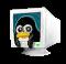 TerminalLinux.xpm.png