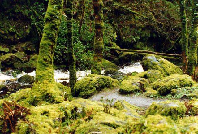 Torc Waterfall - Killarney National Park - geograph.org.uk - 665648