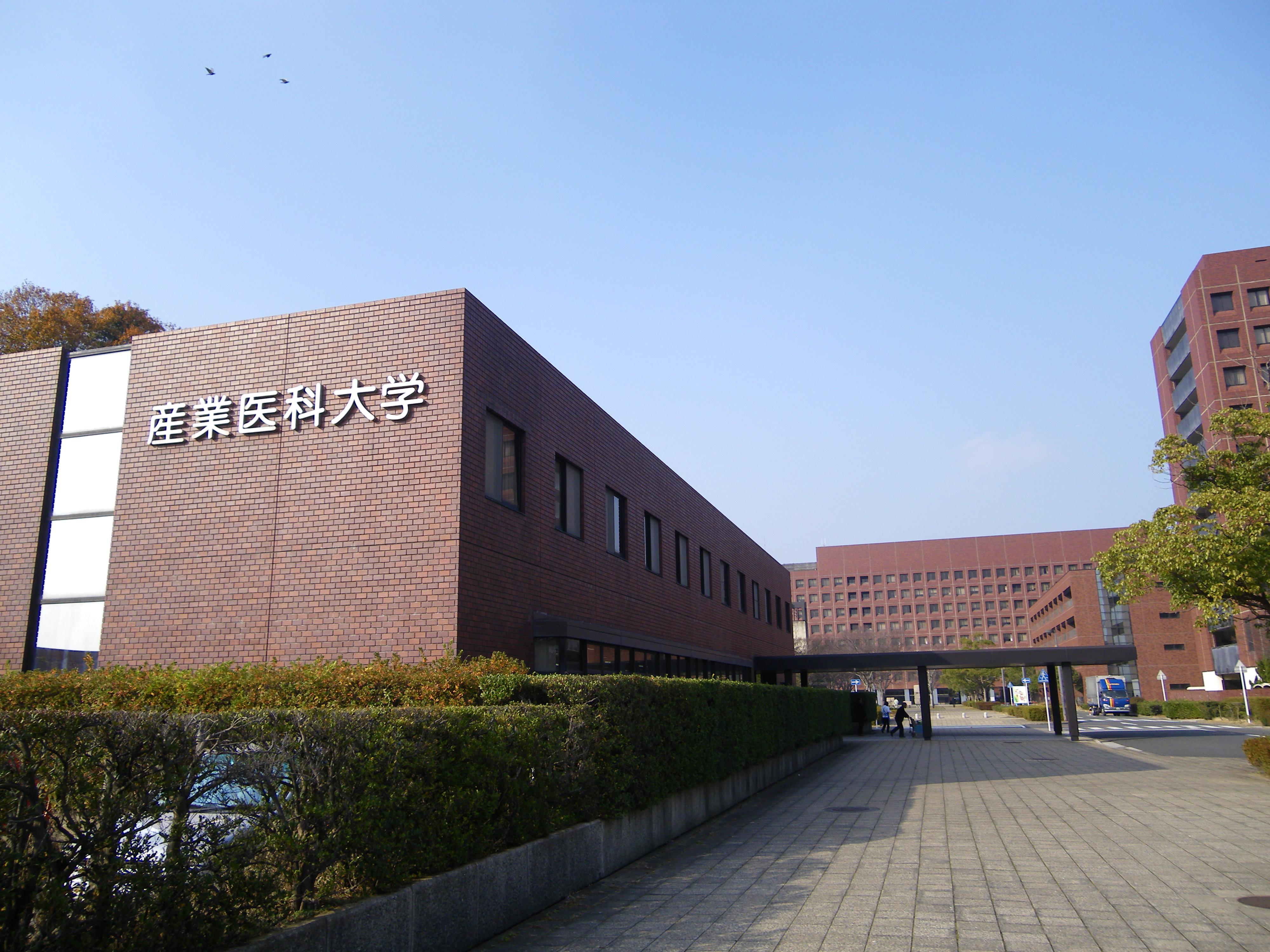 医科 大学 病院 産業