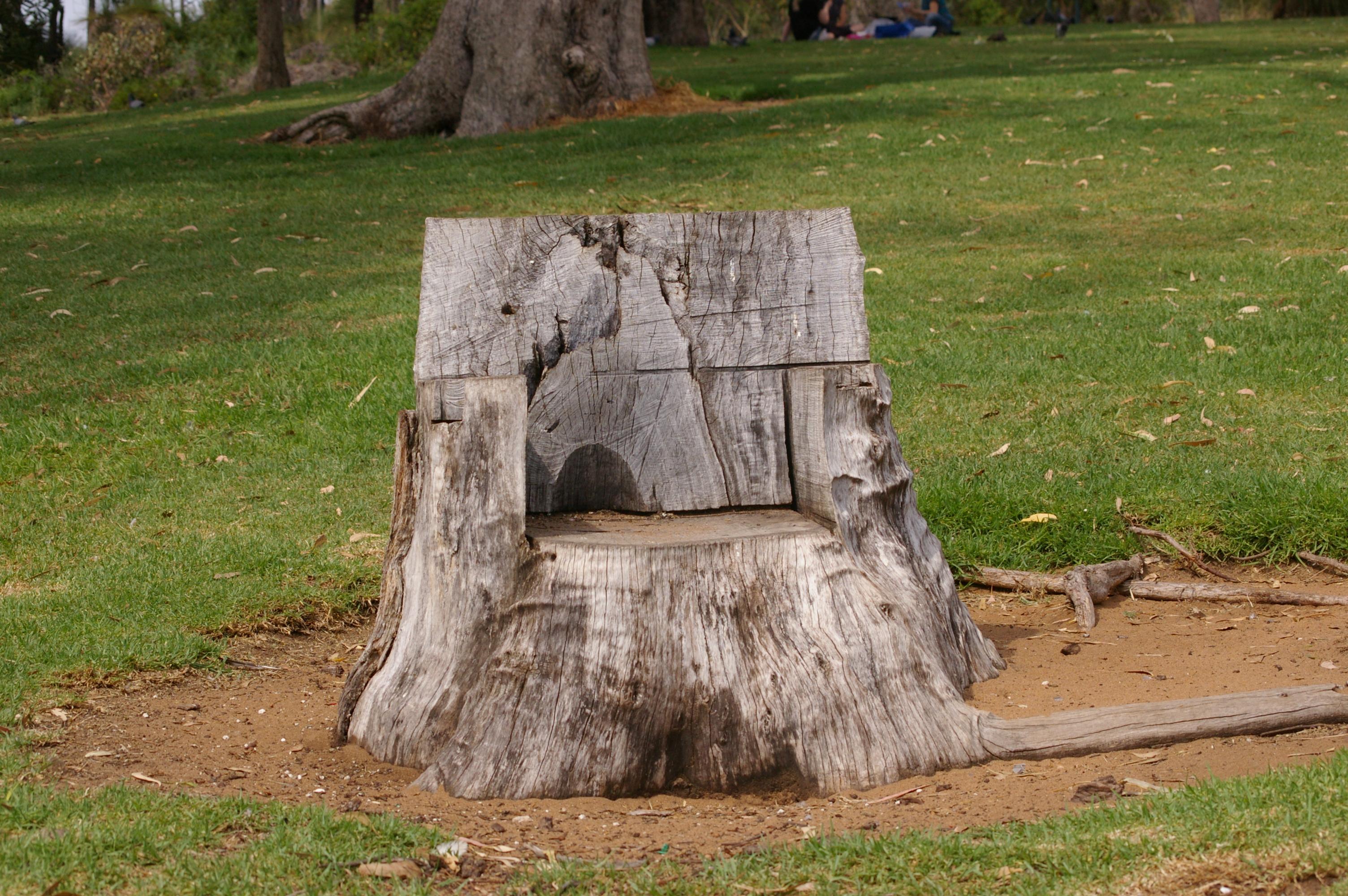 Tree Stump Seats Filewtj Parker D Neil Hawkins Park Tree Stump Seat 1jpg