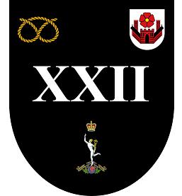 22 Signal Regiment Shield Badge