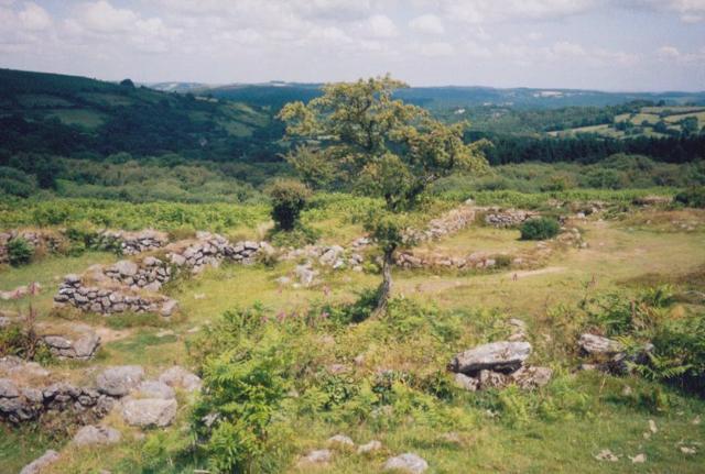 Abandoned medieval village below Hound Tor - geograph.org.uk - 21906