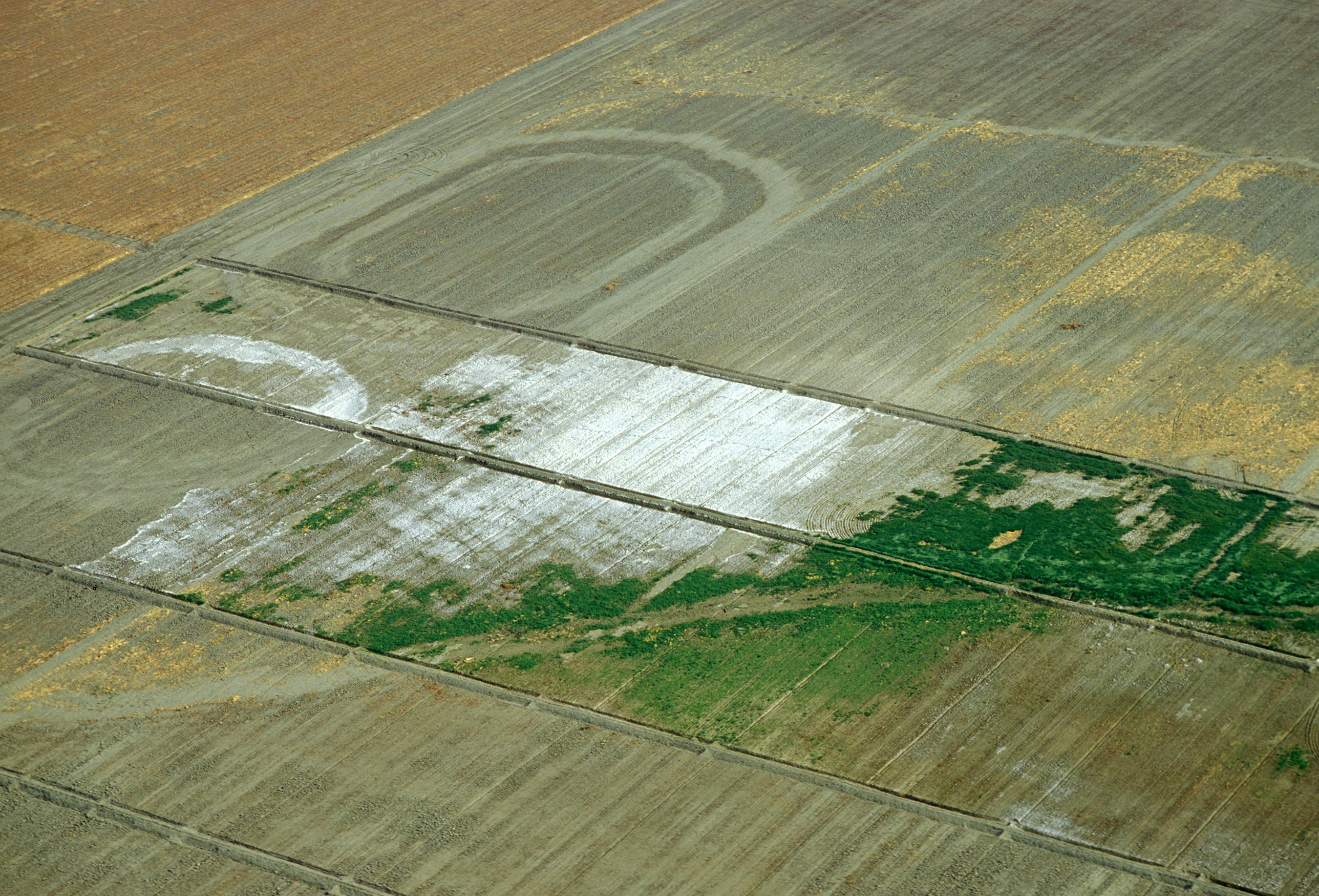 Field View File:aerial View of Fields in