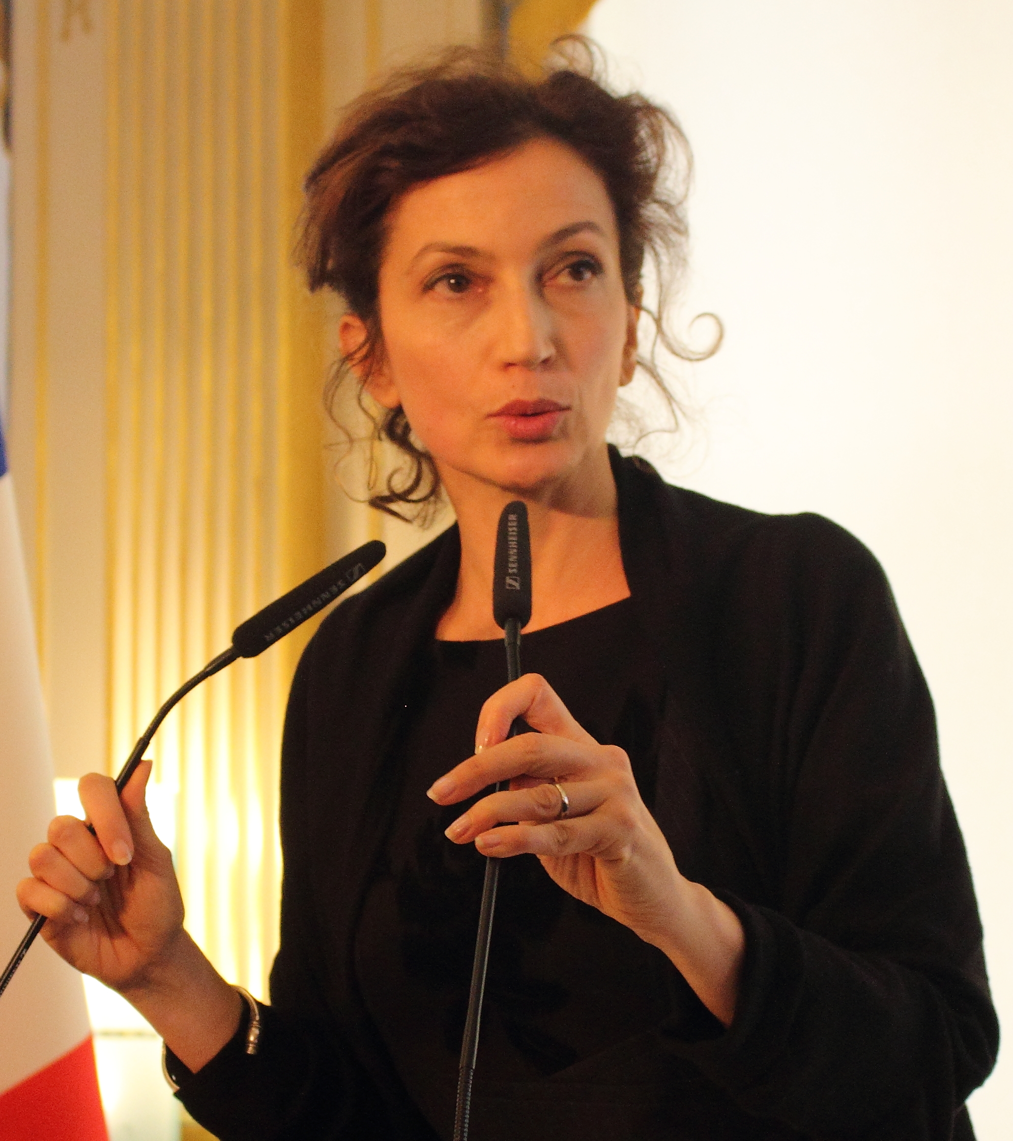 Jacques Azoulay Wiki Complete audrey azoulay - wikiwand