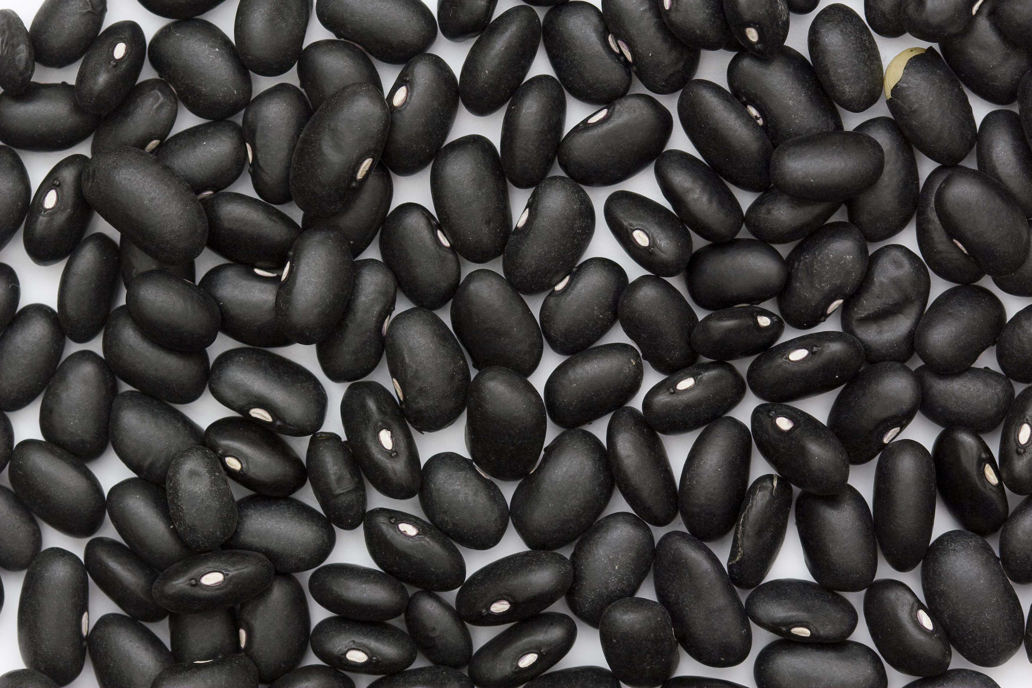 Black Beans Recipe — Dishmaps
