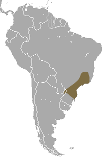 Description de l'image Brazilian Gracile Mouse Opossum area.png.