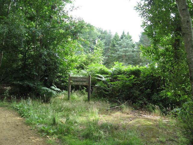 Buchan Park Near Crawley - geograph.org.uk - 1405314