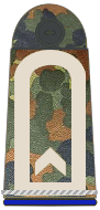 German Army and Air Force rank insignia Bundeswehr-OR-6-FR.png