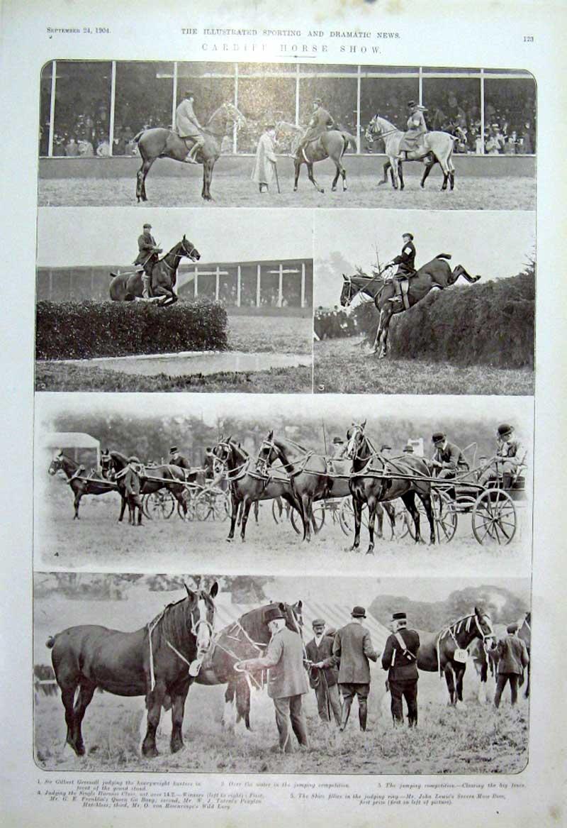 Cardiff Horse Show Wikipedia