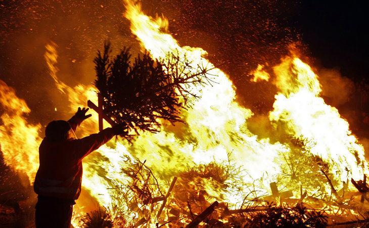 christmas tree fire code