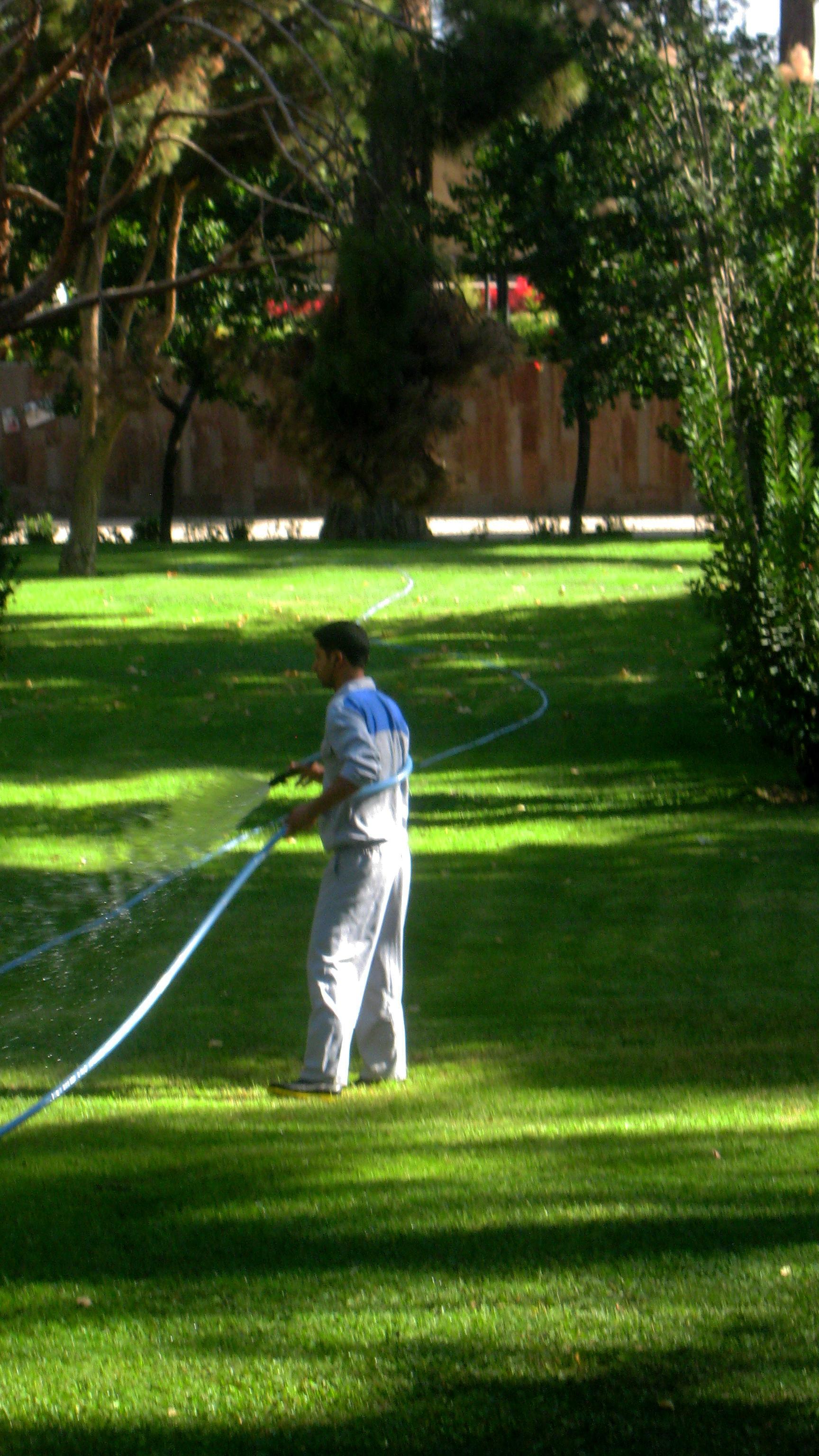 File cleaning services khayyam garden nishapur 2 jpg for Garden cleaning services