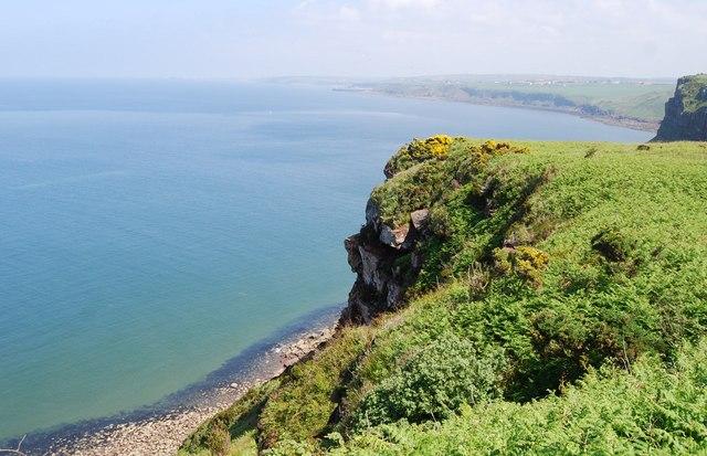 Cliffs, North Head - geograph.org.uk - 1346229
