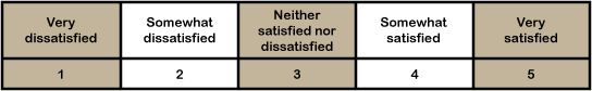 Customer Satisfaction Survey Scale