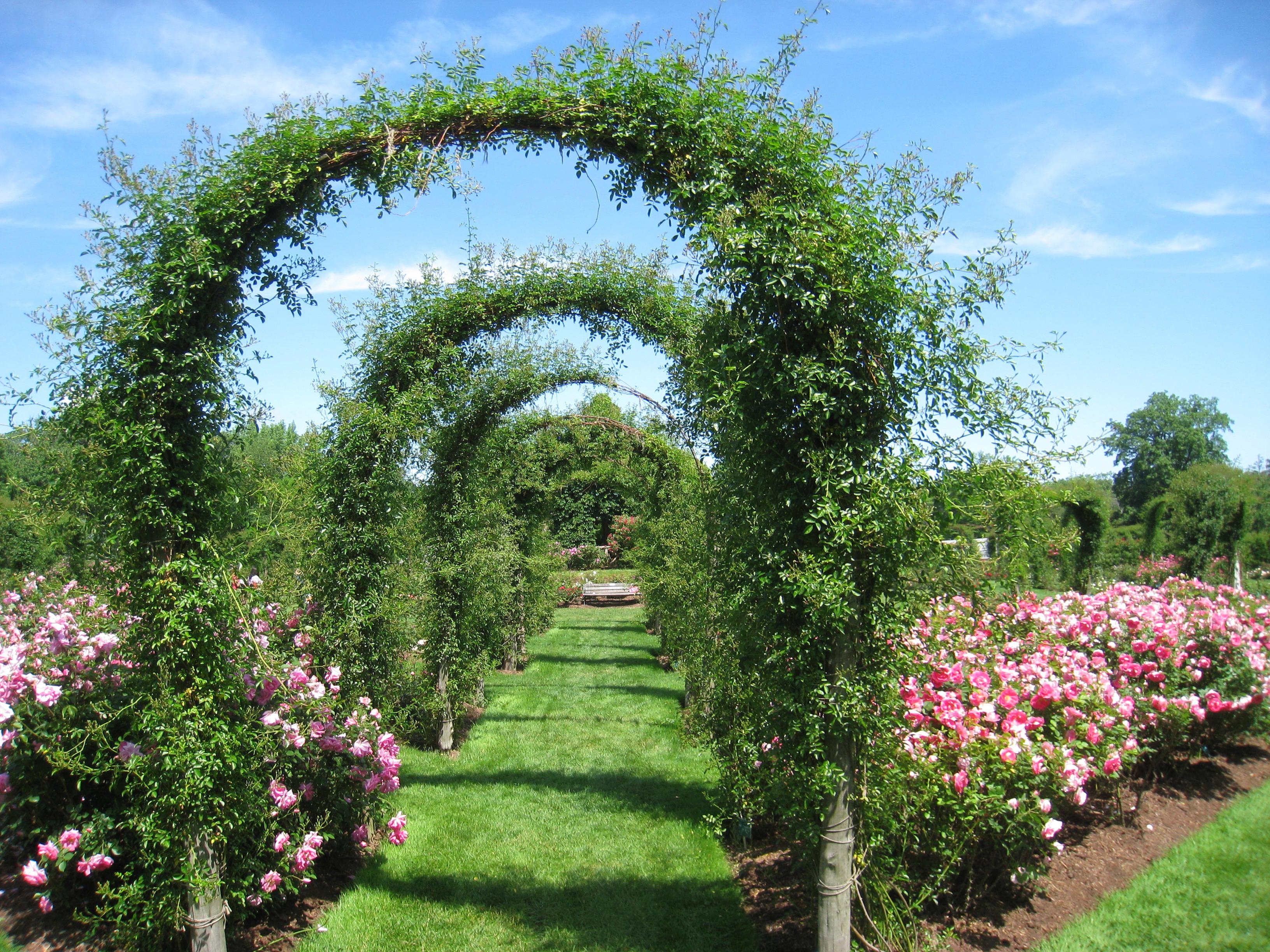 Description elizabeth park hartford ct rose garden 7
