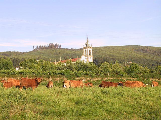 Fontoura