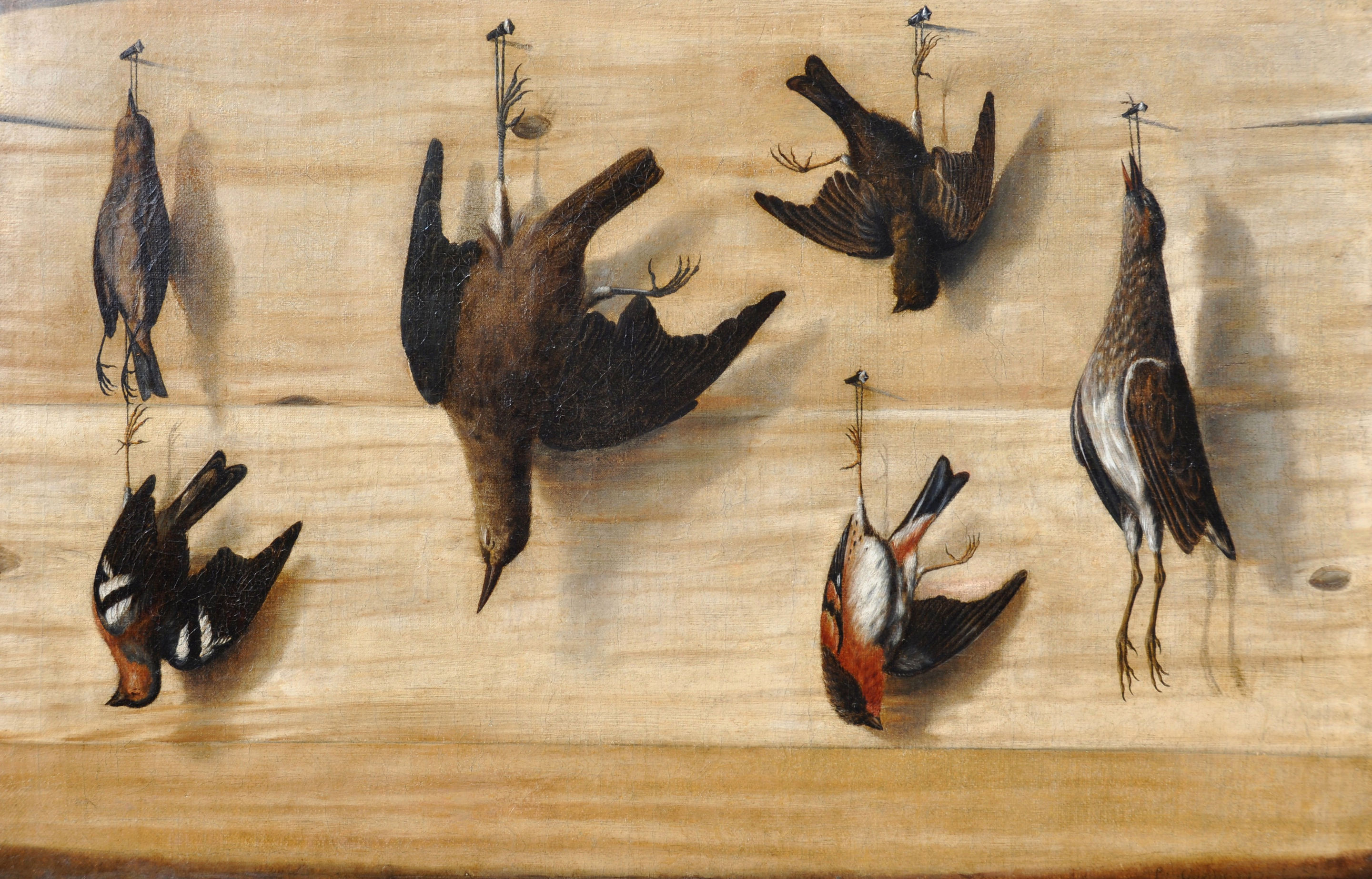 File:Laurent Geedts - Trompe l\'oeil still life of birds hanging from ...