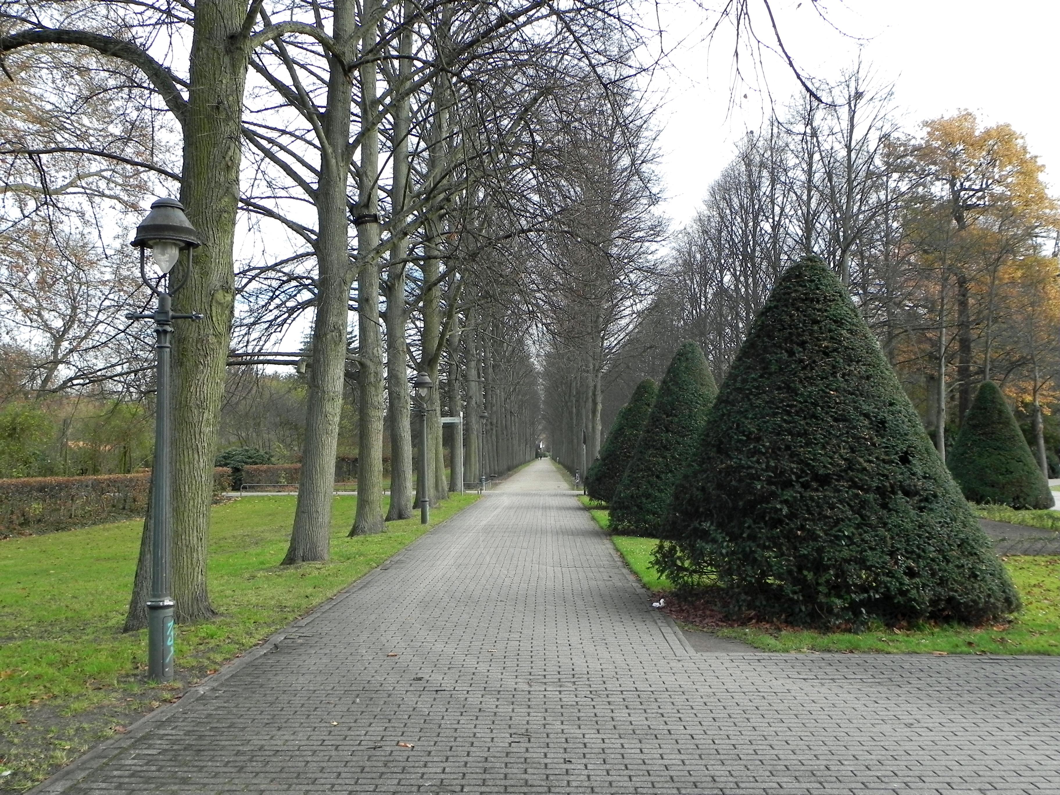 Filelinden Französischer Garten Cellejpg Wikimedia Commons
