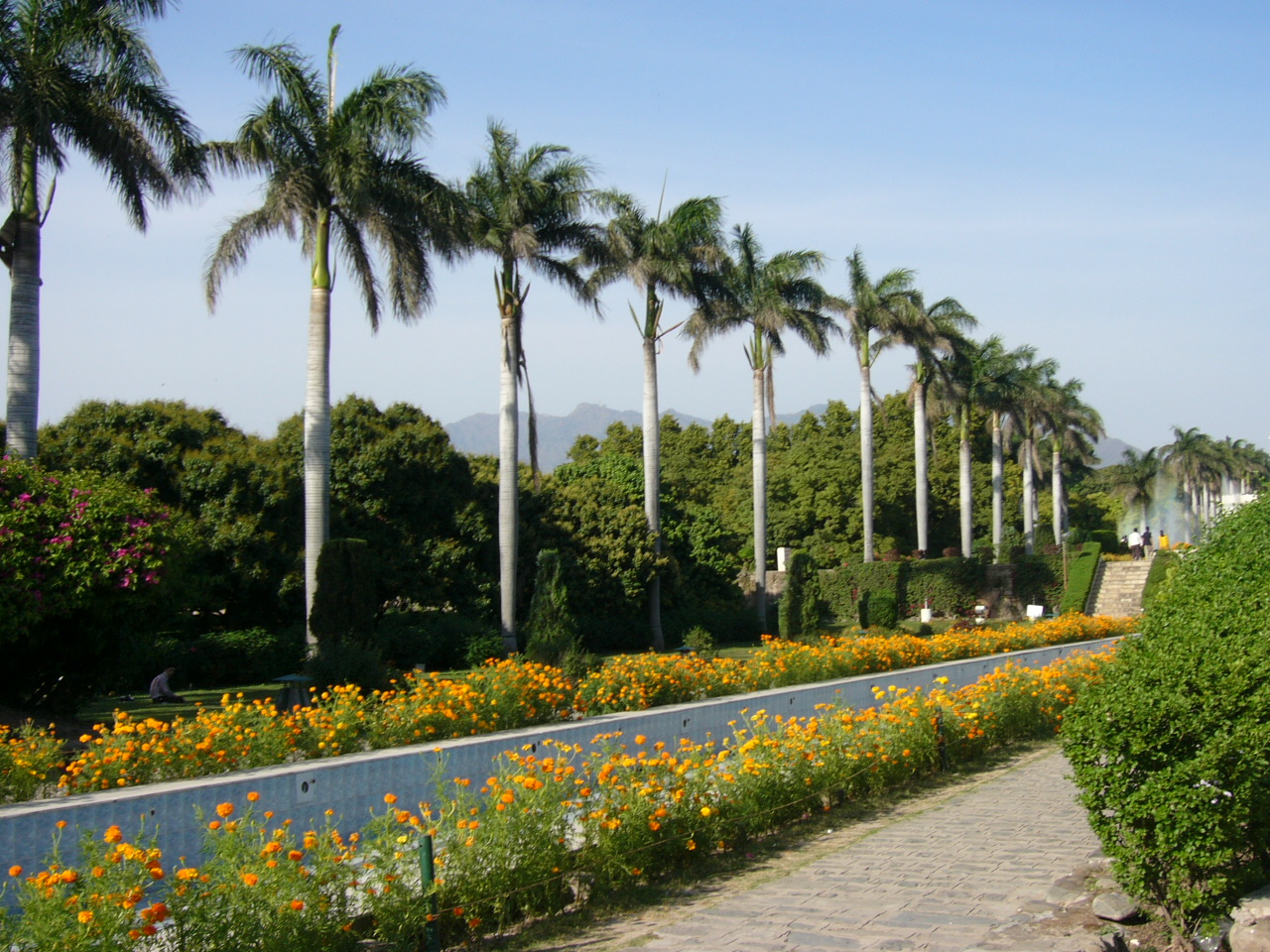 Chandigarh India  city images : Description Pinjore Garden Chandigarh India 9