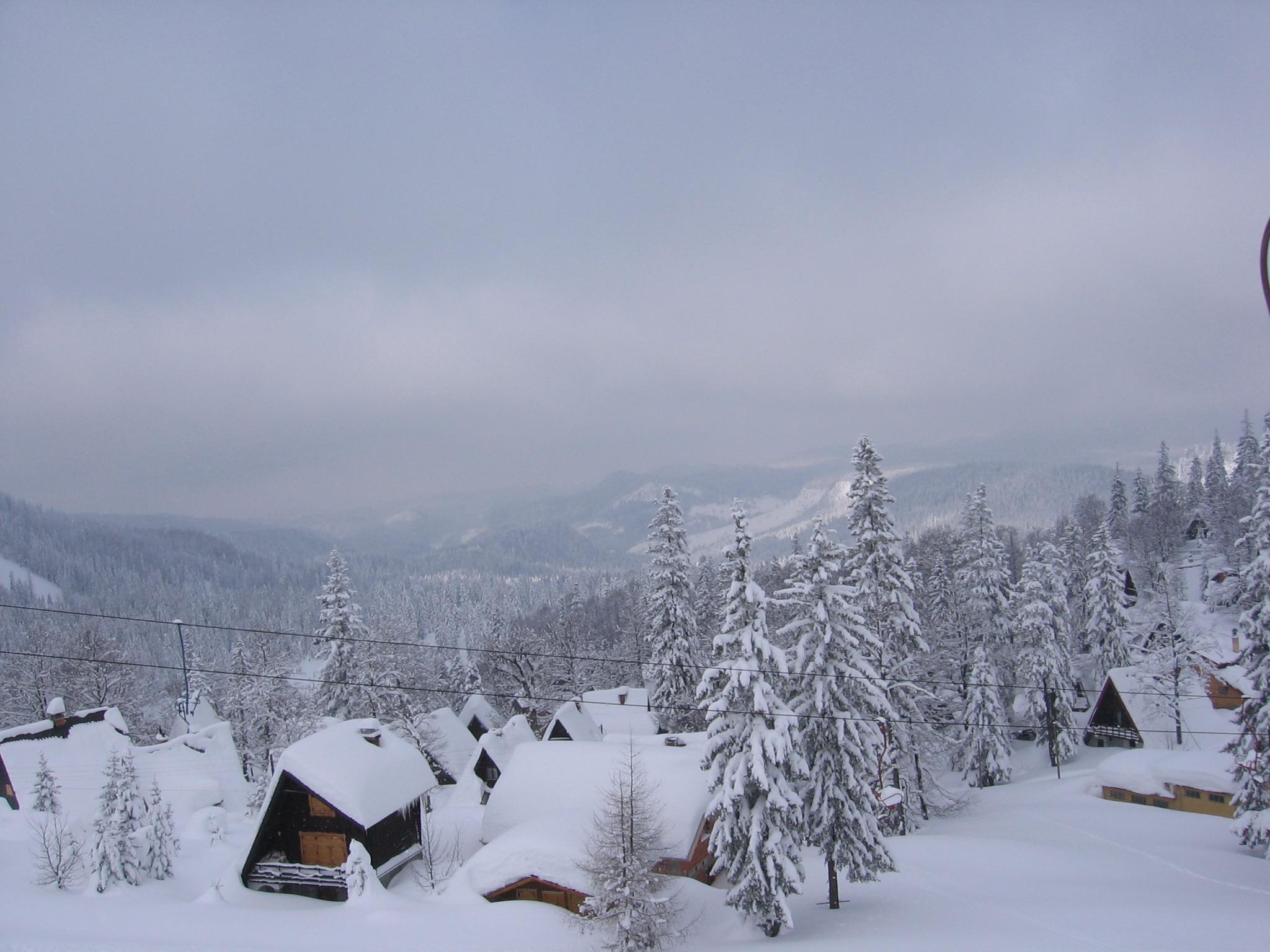 Planina Jahorina.jpg