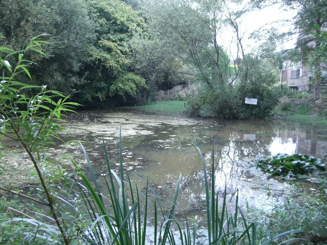 Pond at Henfield - geograph.org.uk - 571131