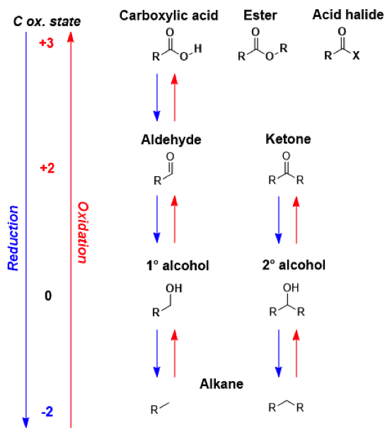 organic alkeyne notes Of all the oxidizing agents discussed in organic chemistry  exhaustive oxidation of organic molecules by kmno 4 will proceed until the formation  notes: note.