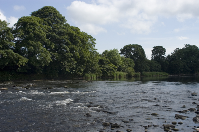 River Ribble near Brockhall - geograph.org.uk - 1372436