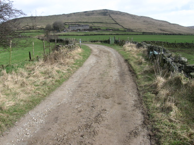 Standedge Trail towards Diggle Edge - geograph.org.uk - 1193944