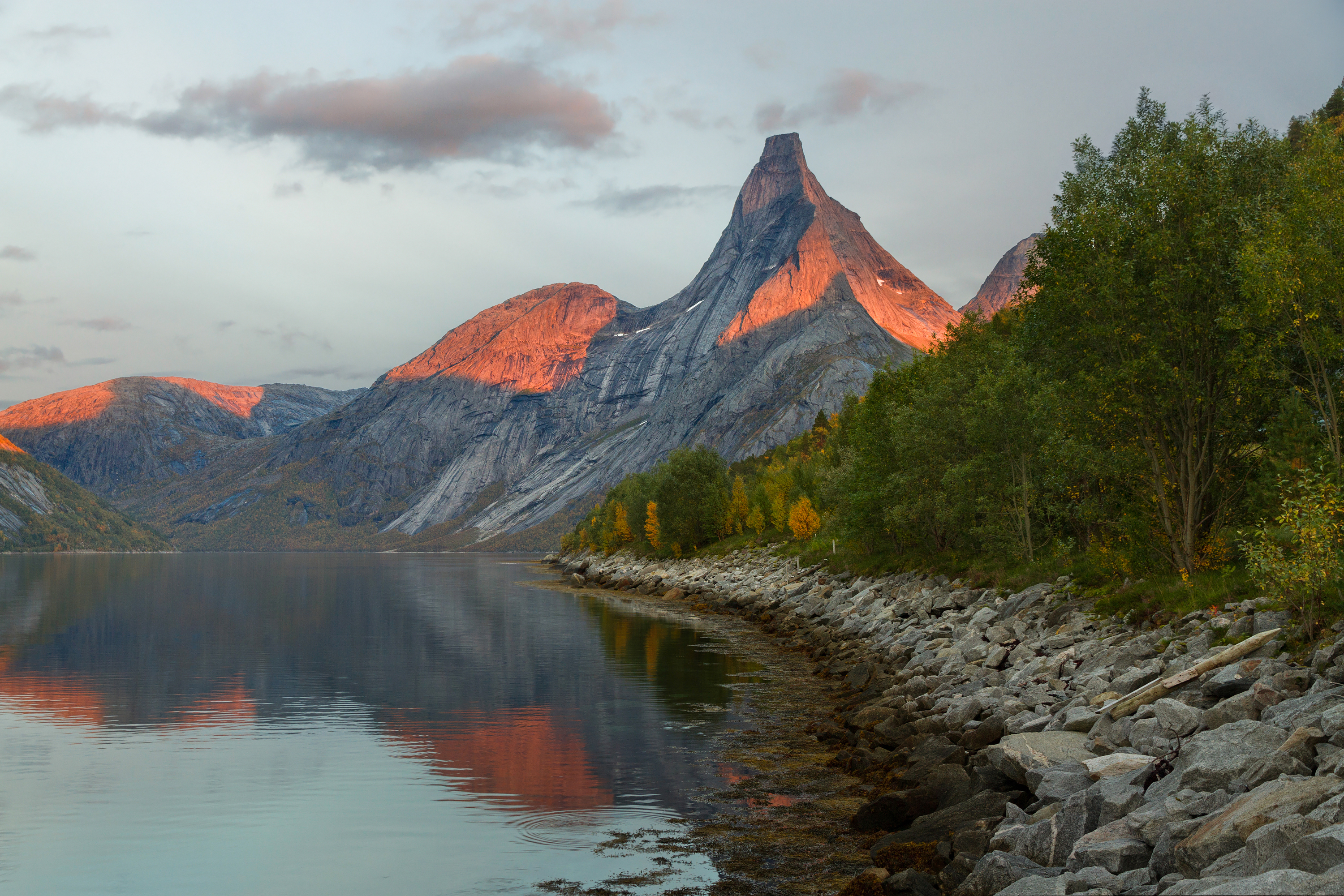 tysfjord speed dating norway