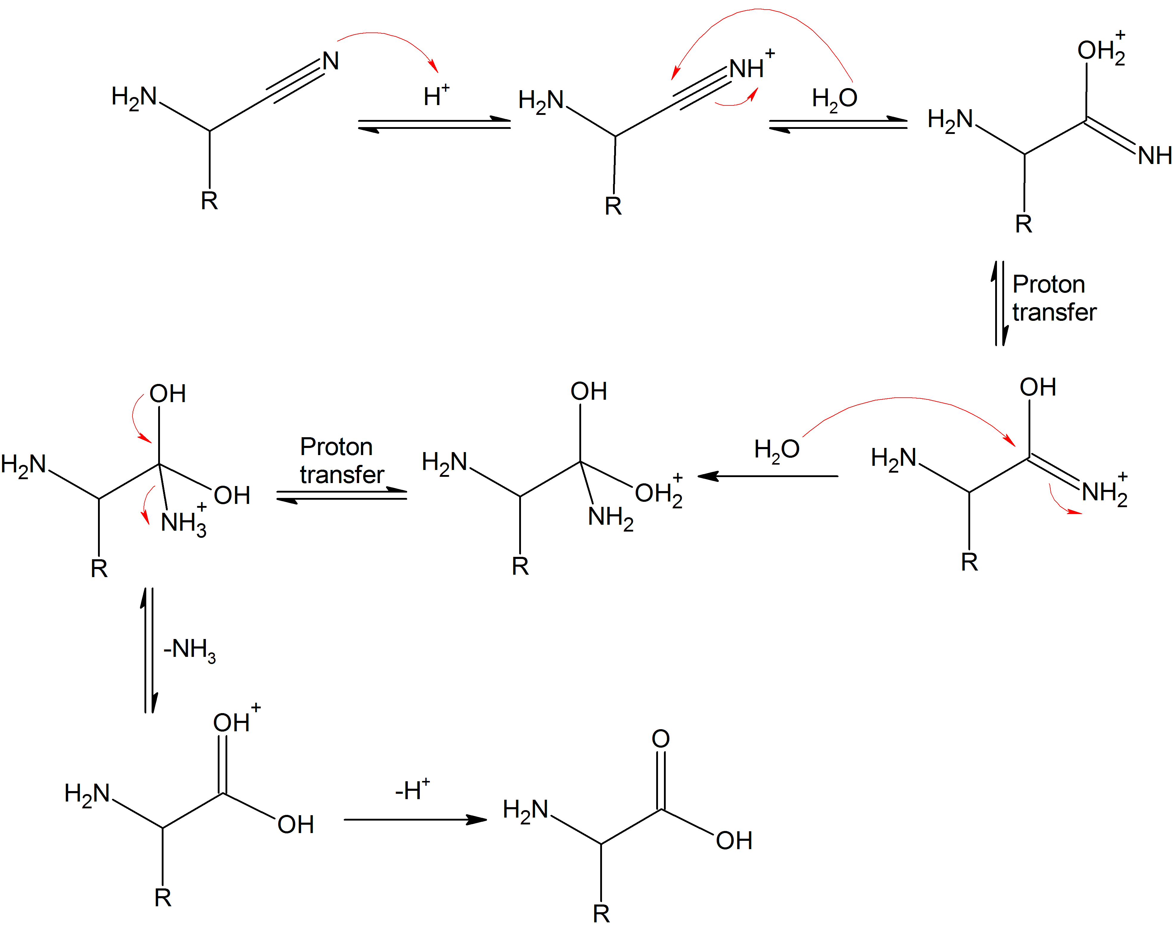Synthesise amino